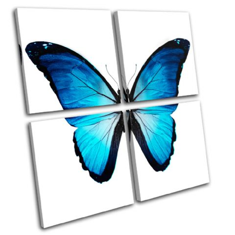 Morpho Butterfly Blue Animals - 13-0535(00B)-MP01-LO